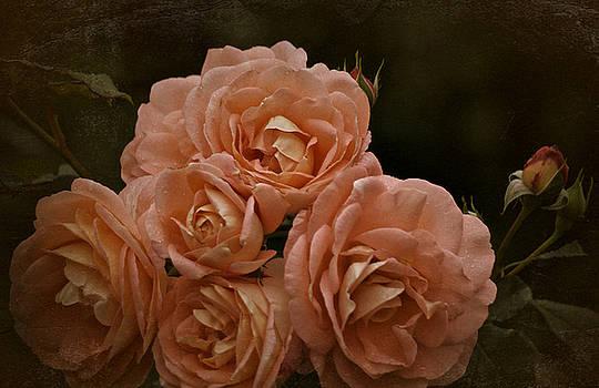 October 2016 Roses by Richard Cummings