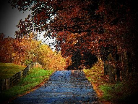 October Road by Joyce Kimble Smith