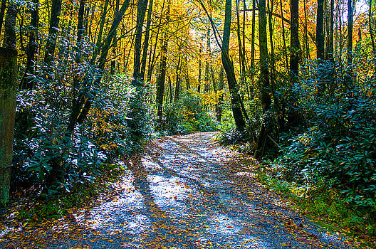 October's Path by Allen Carroll