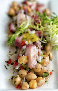 Octopus Salad  by John Hoey