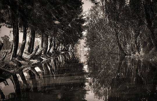 Old Xochimilco in Sepia by David Resnikoff