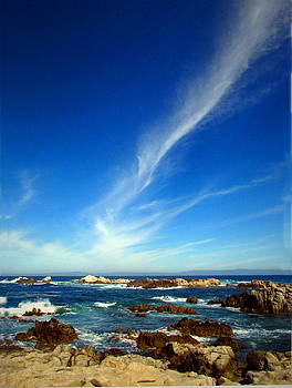 Joyce Dickens - Oh The Beauty  Monterey Peninsula CA