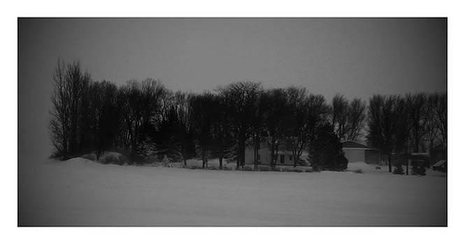 Ohio by Birdie Garcia