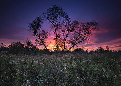 Ojibway Sunset by Cale Best