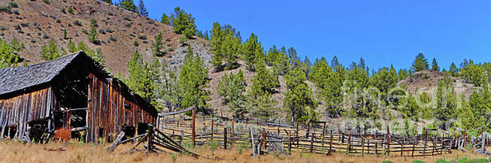 OK Corral by Ansel Price