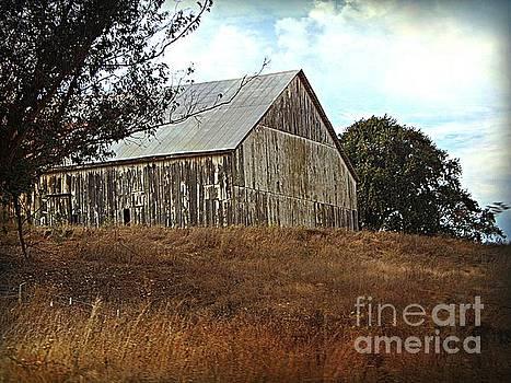 Ol White Barn by Bobbee Rickard