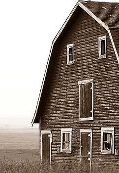 Old Barn Front by Mario Brenes Simon