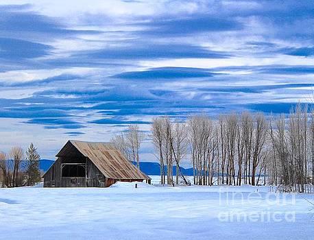 Old Barn in Fort Klamath by Irina Hays