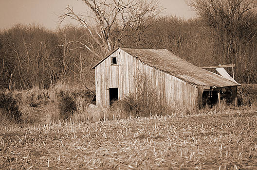 Old Barn by Jame Hayes