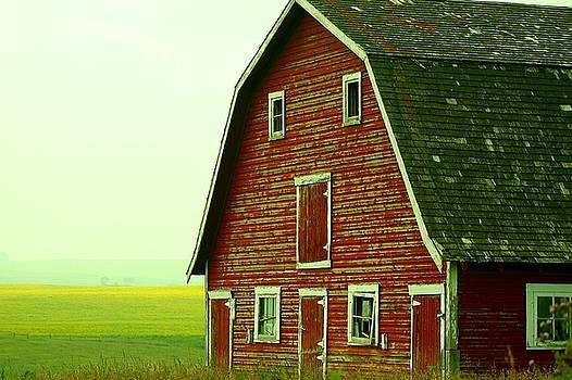 Mario Brenes Simon - Old Barn