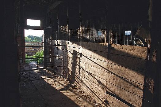Old Barn by Scott Holmes