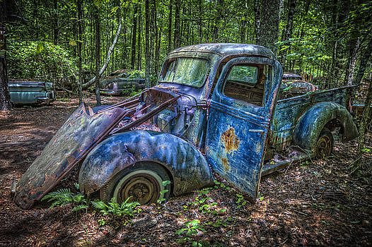 Debra and Dave Vanderlaan - Old Blue in the Woods