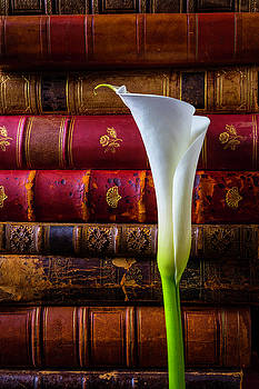 Old Books And Calla Lily by Garry Gay