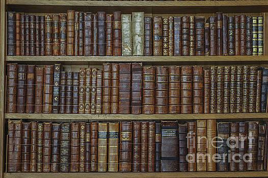 Patricia Hofmeester - Old books