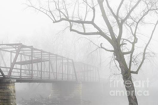 Old Bridge At Oakland Mills by Tamara Becker