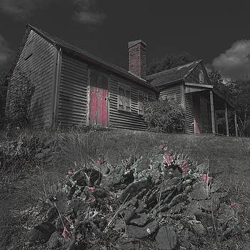Old Cape Cod House Black and White With Red by Dapixara Art