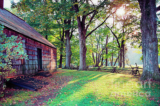 Old Farmhouse in Warm Autumn Sunlight by George Oze