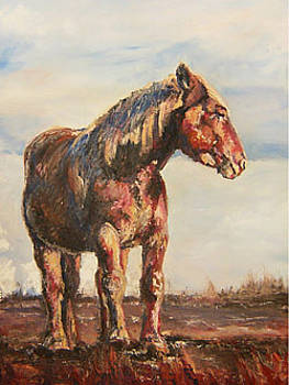 Old Fashion Workhorse by Angela Craver