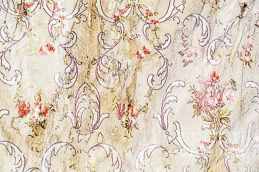 Old Flowered Wallpaper by Sue Smith