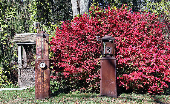 Old Gas Pumps by Gerald Mitchell