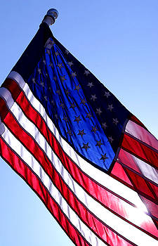 Old Glory by Steve Augustin