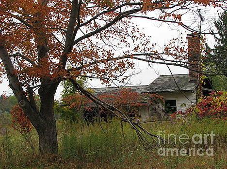 Old Homestead by Michael Krek