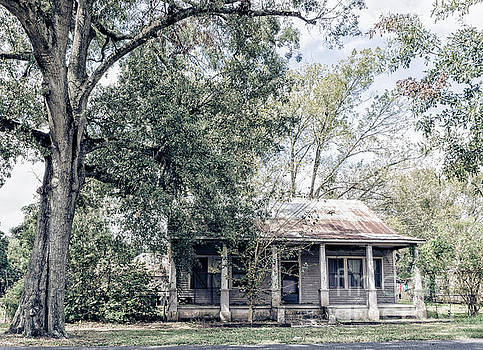 Kathleen K Parker - Old House and Tree in Donaldsonville LA