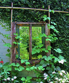 Old Kitchen Window by Cynthia Guinn