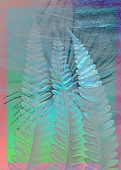 Old paper and silver fern by Heike Schenk-Arena