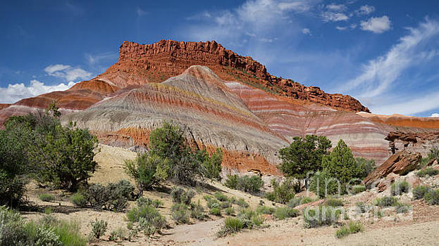Old Paria Road 585 by Jerry Fornarotto