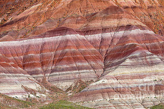 Old Paria Road 585 Striations by Jerry Fornarotto
