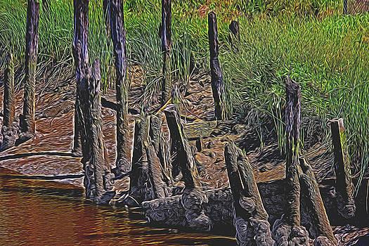 Old Pier Pilings  by Garry Gay