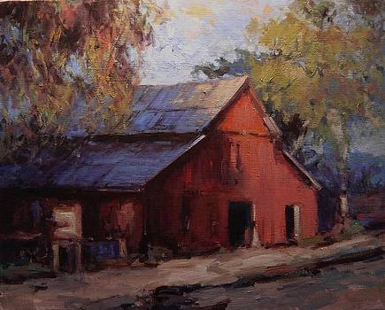 Old red barn in the shadows by R W Goetting