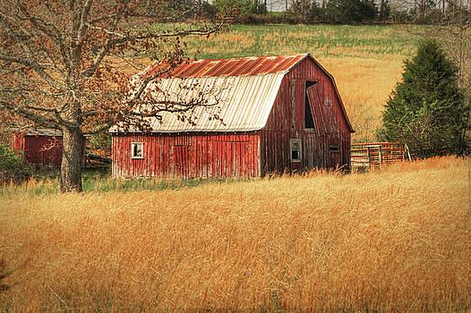 Tamyra Ayles - Old Red Barn