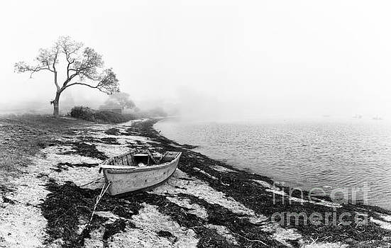 Old rowing boat by Jane Rix