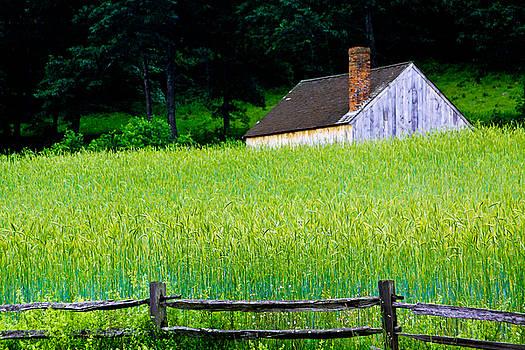 Old Sturbridge Farm by Belinda Dodd
