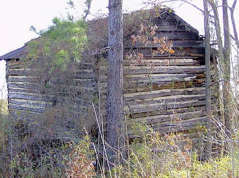 Old Tobacco Barn by Linda Bennett