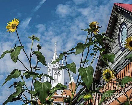 Old Town Albuquerque by Steve Whalen