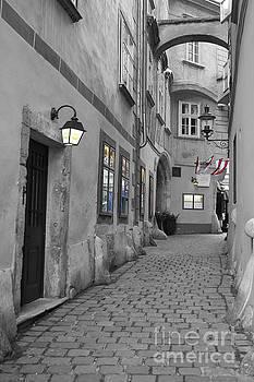 Old Town Vienna by David Birchall