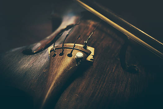 Old violin by Cindy Grundsten