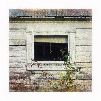 Old Window 6 by Priska Wettstein