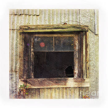 Old Window 8 by Priska Wettstein