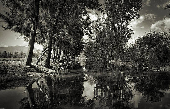 Old Xochimilco Scene in Black and White by David Resnikoff