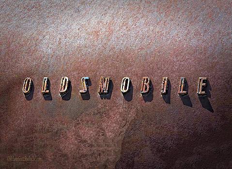 Oldsmobile by LeeAnn McLaneGoetz McLaneGoetzStudioLLCcom