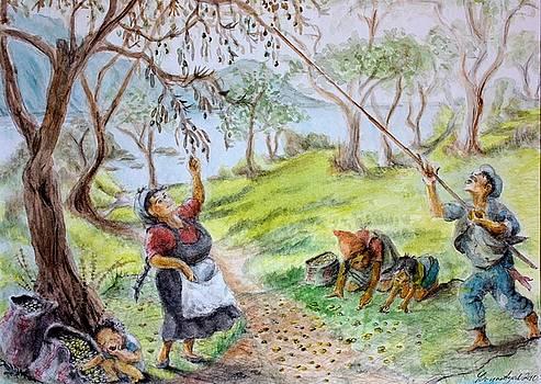 Yvonne Ayoub - Olive Picking at Kechrya