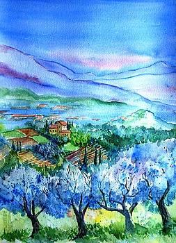 Olive trees Montecarlo Tuscany  by Trudi Doyle
