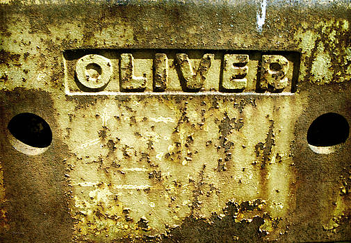 Oliver 2 by Cynthia Lassiter