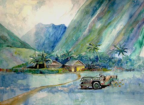 Olowalu Valley by Ray Agius