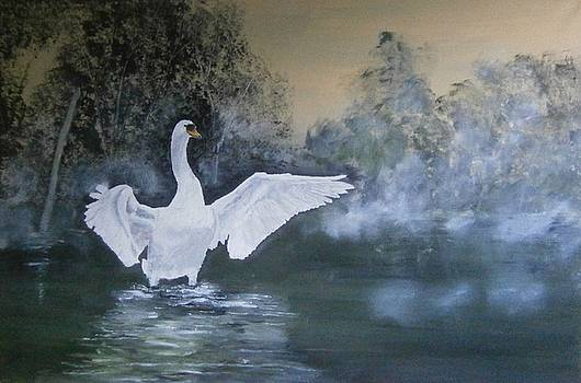 On Ditchling Pond by Andy Davis