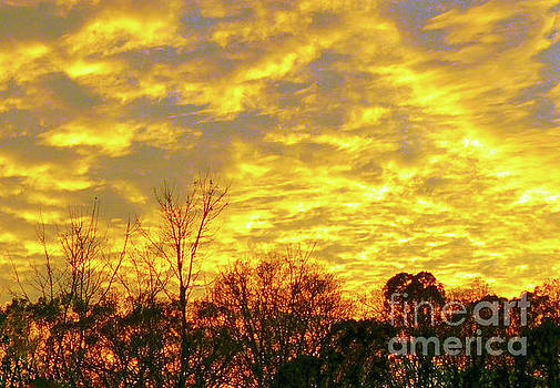 On Golden Sky by Lydia Holly